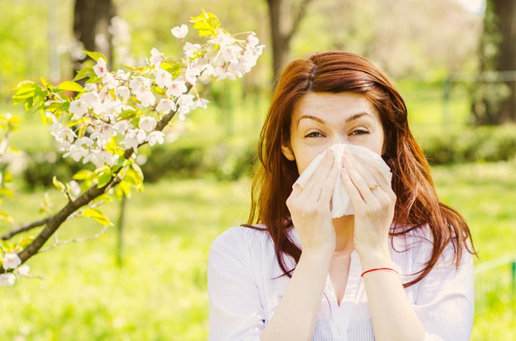 Allergic rhinitis - hay fever