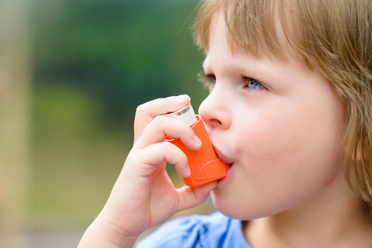 Asthma: preventer medications